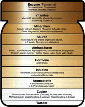 honigbestandteile
